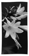 Fragrant Plantain Lily Bath Towel