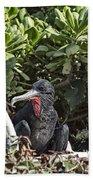 Frigate Bird- Hawaii V2 Bath Towel