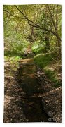 Frijole Creek Bandelier National Monument Bath Towel