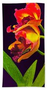Frilly  Red And Yellow Orchids Bath Towel