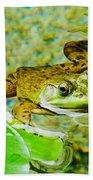 Frog  Abby Aldrich Rockefeller Garden Bath Towel