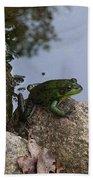 Frog At Edge Of Pond Bath Towel
