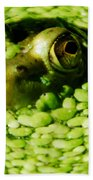 Frog Eye's Bath Towel