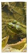 Frog Thinks He's Hidden Under A Twig Bath Towel