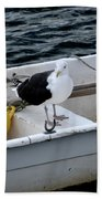 From Rockport Ma A Seagull Chilling Out In A Rowboat Bath Towel