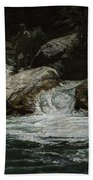 Arizona Frontiersman Rocks Bath Towel