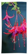 Fuchsia Bath Towel