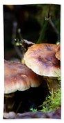 Fungus Among Us II Bath Towel