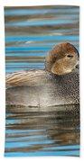 Gadwall Duck Drake Swimming Bath Towel