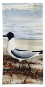 Galveston Gull Bath Towel