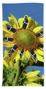 Garciacat Sunflower Bath Towel