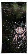 Garden Spider Bath Towel