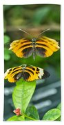 Gentle Butterfly Courtship 01 Bath Towel