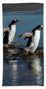 Gentoo Penguins Walking Bath Towel