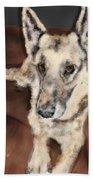 German Shepherd On Couch Hand Towel