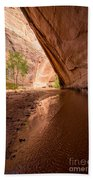Giant Alcove Coyote Gulch - Utah Bath Towel