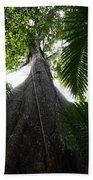 Giant Cashew Tree Amazon Rainforest Brazil Bath Towel