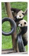 Giant Panda Cubs Bath Towel