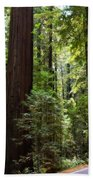 Giants And The Road Bath Towel