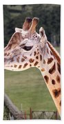 Giraffe 02 Bath Towel by Paul Gulliver