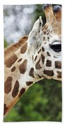 Giraffe Beauty Bath Towel