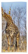 Giraffe Bath Towel
