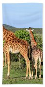 Giraffe Group On The Masai Mara Hand Towel