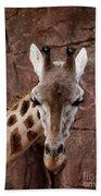Giraffe Head Bath Towel