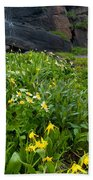 Glacier Lilies And Globeflower Beside A Mountain Stream Bath Towel