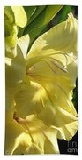 Gladiolus Named Nova Lux Hand Towel