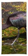 Glossy Ibis Bath Towel