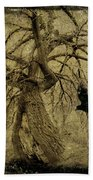 Gnarled And Twisted Tree With Crow Bath Towel