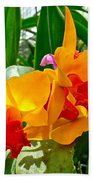 Gold And Red Orchids At Maerim Orchid Farm In Chiang Mai-thailan Bath Towel