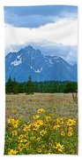 Golden Asters And Tetons From The Road In Grand Teton National Park-wyoming Bath Towel