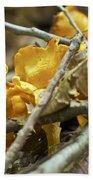 Golden Chanterelle - Cantharellus Cibarius Bath Towel