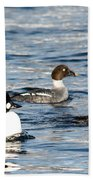 Golden-eyed Ducks Bath Towel