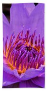 Golden Glow Of The Lavender Lotus Bath Towel