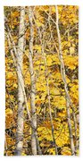 Golden Leaves In Autumn Abstract Bath Towel