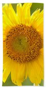 Golden Moment - Sunflower Bath Towel