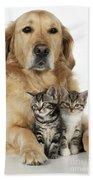 Golden Retriever And Kittens Bath Towel