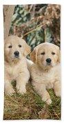 Golden Retriever Puppies In The Woods Bath Towel