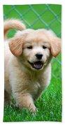 Golden Retriever Puppy Hand Towel