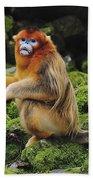Golden Snub-nosed Monkey Male China Bath Towel