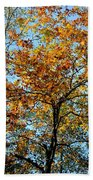 Golden Tree Lined Sky Bath Towel