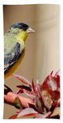 Goldfinch On Branch 031015aab Bath Towel