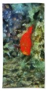 Goldfish Photo Art 05 Bath Towel