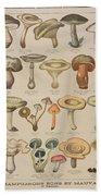 Good And Bad Mushrooms Bath Towel