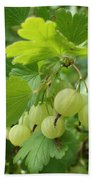 Gooseberries Bath Towel