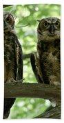 Gorgeous Great Horned Owls Bath Towel