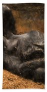 Gorilla - Painterly Bath Towel